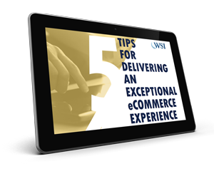 How To Guide 5 : Tips For Delivering An Exceptional eCommerce Experience