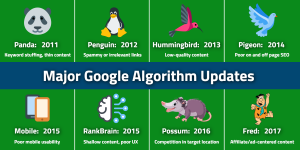 Major Google Algorithm Updates | WSI Ottawa