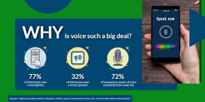 Why is voice search such a big deal? | WSIeStrategies