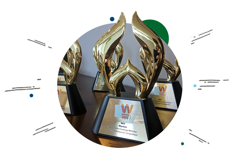 About WSI award winning